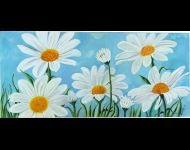 Margherite in prato / Daisies in the field